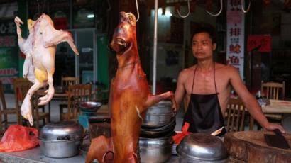 اكلات الصين وسبب انتشار فيروس كورونا؟؟؟